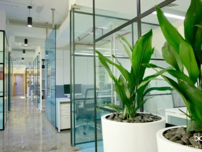 (3) Interior Designer For Office Dubai – Veecham Offices – From CeciliaClasonInteriors.com