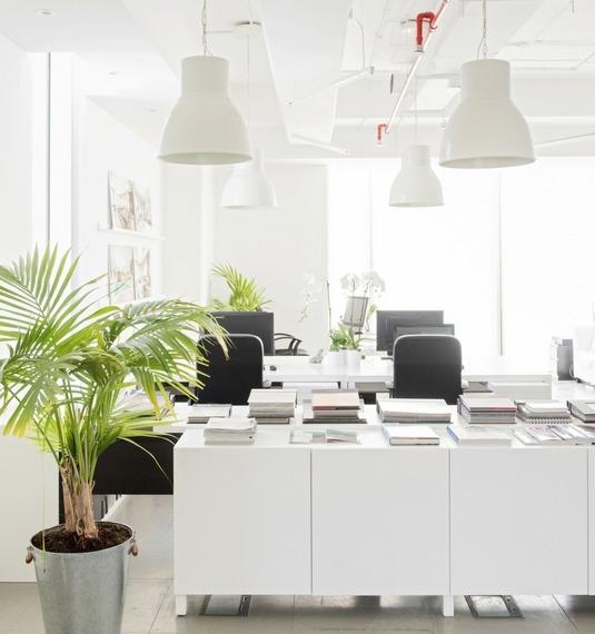 Office Interior Design - Photo of Interior Design company, Cecilia Clason's office in Dubai