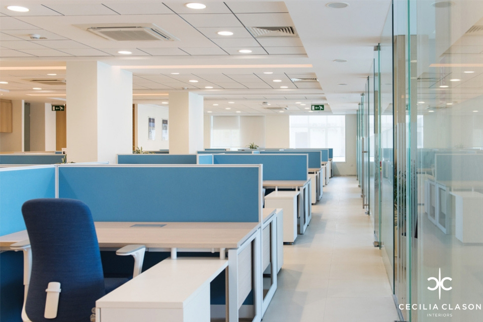 Office Interior Design - Wood top desks with light blue partitions, next to deep blue office chairs next to glass partition