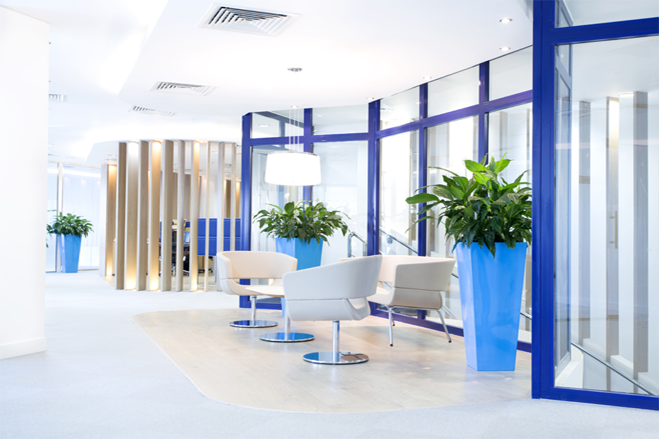 Office Interior Design - Slanted window panels with blue frame, modern chairs & wooden slates