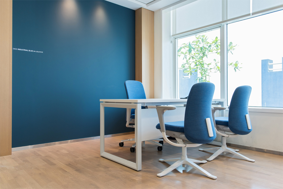 Office Interior Design - Deep blue feature wall with white office desk and white & blue chairs, on wooden flooring